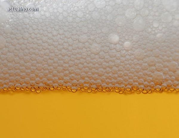 photo of Български учени повишават антиоксидантите в бирата с 55%