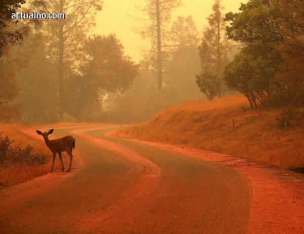 photo of Все още ли не вярвате в климатичните промени?