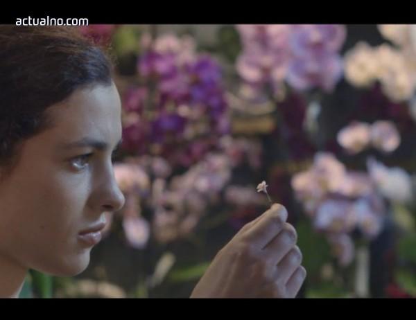 photo of Единайсет български филма на CineLibri 2018