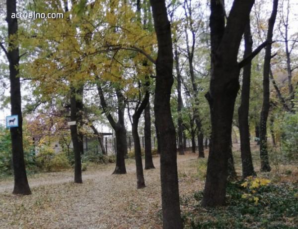 photo of Засаждат 14 000 дървета в новия парк на Пловдив