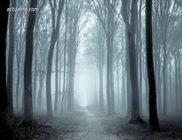 photo of За кого е най-опасен сезонът на мъглите?
