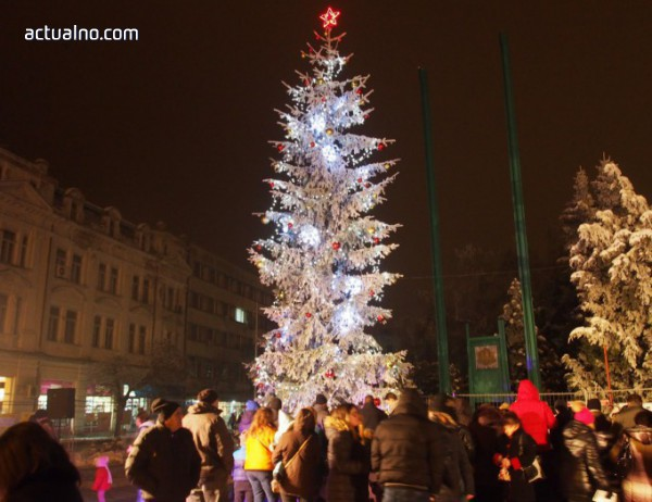 photo of 11-метрова коледна елха грейна във Видин