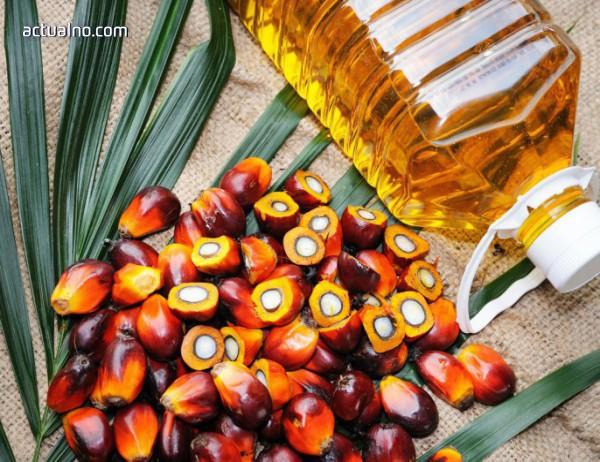 Палмовото масло в храната води до затлъстяване и развиване на хронични болести